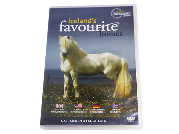 Iceland's Favourite Horses